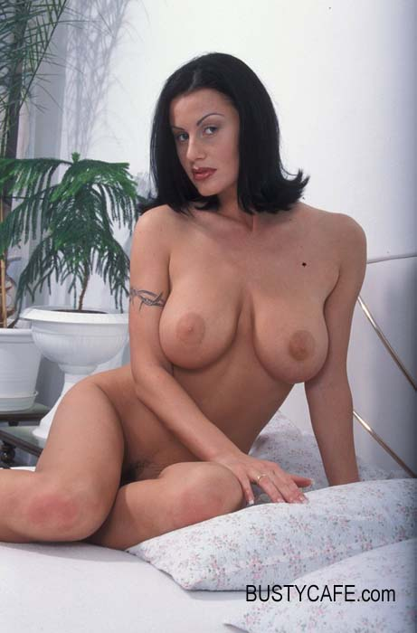 Would love busty brunete pornstars Why can't this